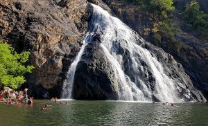 Dudhsagar Waterfalls Day Trips