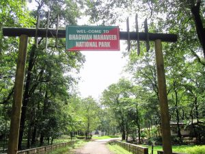 Bhagwan Mahaveer Wildlife Sanctuary